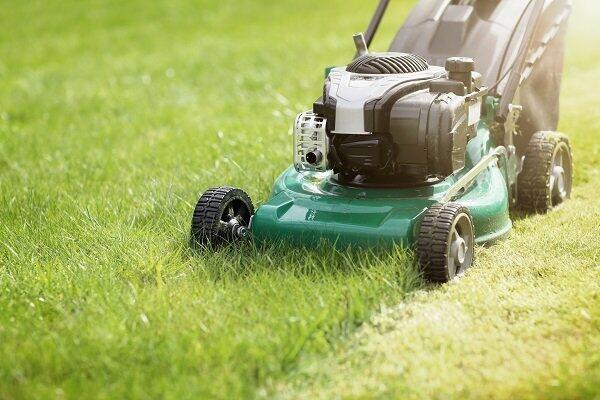 Qual cortador de grama é o ideal para o meu jardim?